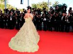Sonam Kapoor on the Red Carpet  on Day 6 at Cannes