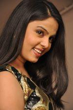 Chitralekha (1)_555ecf42eb662.jpg