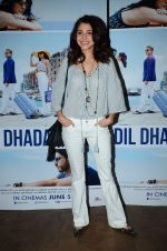 Anushka Sharma at Dil Dhadakne Do screening in Mumbai on 28th May 2015