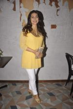 Juhi Chawla at the launch of Pizza Metro Pizza in Kemps Corner on 30th May 2015 (70)_556aea41e0917.JPG