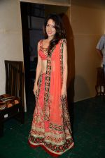 Vidya Malvade at Munisha Khatwani_s debut play as producer premiere in Mumbai on 31st May 2015 (136)_556c4a84a86aa.JPG