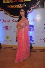 Kishwar merchant at Gold Awards in Filmistan on 4th June 2015 (13)_557182956846f.JPG