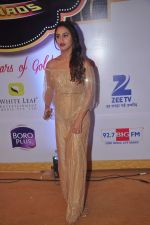 Krystal D Souza at Gold Awards in Filmistan on 4th June 2015 (115)_557182a019ff0.JPG