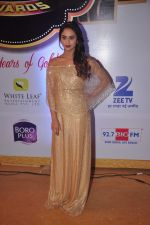 Krystal D Souza at Gold Awards in Filmistan on 4th June 2015