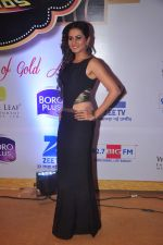 Sargun mehta at Gold Awards in Filmistan on 4th June 2015 (137)_557182d90453a.JPG