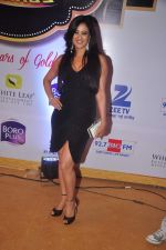 Shweta Tiwari at Gold Awards in Filmistan on 4th June 2015 (124)_557182e8adb61.JPG