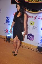 Shweta Tiwari at Gold Awards in Filmistan on 4th June 2015 (125)_557182ea488c7.JPG