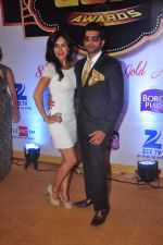 Teejay Sidhu at Gold Awards in Filmistan on 4th June 2015