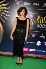 Dia Mirza at IIFA Awards 2015 in Kuala Lumpur on 5th June 2015