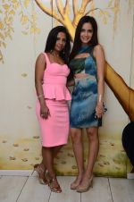 Shazahn Padamsee at Dimple Nahar_s Pre Monsoon pp up at 2Divine with Sonya Vajifdar in 2 Divine Store on 5th June 2015 (1)_5572db7497f92.JPG