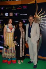 at IIFA Awards 2015 in Kuala Lumpur on 5th June 2015