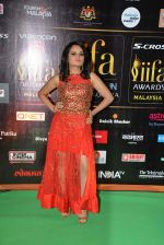Aditi Singh Sharma at the IIFA Fashion Extravaganza on 6th June 2015 (133)_557425924710f.JPG