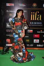 Divya Kumar at the IIFA Fashion Extravaganza on 6th June 2015
