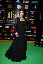 Kainaat Arora at the IIFA Fashion Extravaganza on 6th June 2015