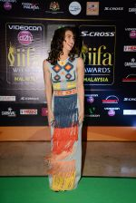Lauren Gottlieb at Dil Dhadakne Do premiere at IIFA Awards on 6th June 2015