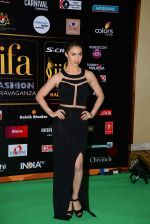 Lauren Gottlieb at the IIFA Fashion Extravaganza on 6th June 2015