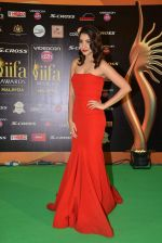 Anushka Sharma at IIFA 2015 Awards day 3 red carpet on 7th June 2015