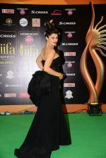 Kainaat Arora at IIFA 2015 Awards day 3 red carpet on 7th June 2015