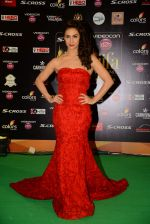 Lauren Gottlieb at IIFA 2015 Awards day 3 red carpet on 7th June 2015