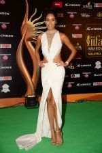 Lisa haydon at IIFA 2015 Awards day 3 red carpet on 7th June 2015