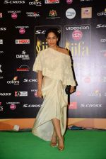 Masaba at IIFA 2015 Awards day 3 red carpet on 7th June 2015