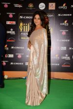 Shefali Shah at IIFA 2015 Awards day 3 red carpet on 7th June 2015 (81)_5575a1f43c074.JPG