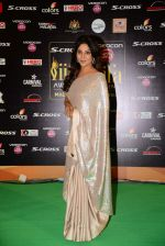 Shefali Shah at IIFA 2015 Awards day 3 red carpet on 7th June 2015 (82)_5575a1f4eb1be.JPG