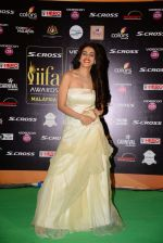 genelia D Souza at IIFA 2015 Awards day 3 red carpet on 7th June 2015 (176)_55759f3a6c704.JPG