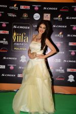 genelia D Souza at IIFA 2015 Awards day 3 red carpet on 7th June 2015