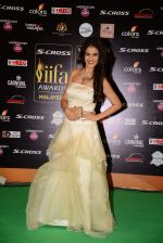 genelia D Souza at IIFA 2015 Awards day 3 red carpet on 7th June 2015 (180)_55759f3d15f62.JPG