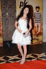 Ankita Lokhande at PK success bash in Mumbai on 10th June 2015 (169)_55798984995c0.JPG