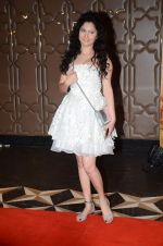 Ankita Lokhande at PK success bash in Mumbai on 10th June 2015 (170)_557989857079f.JPG