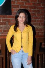 Sneha Ullal photo shoot on 10th June 2015 (7)_557959dbb9d61.JPG