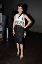 Roop Durgapal at Pancham documentry launch in Mumbai on 23rd June 2015 (26)_558a656f23c48.JPG