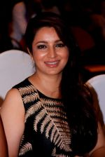 Tisca Chopra at Highway music launch in Mumbai on 25th June 2015 (77)_558c14244778a.JPG