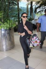 Asin Thottumkal snapped at airport in Mumbai on 26th June 2015 (23)_558e7067b4c92.JPG