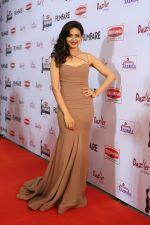 62nd Filmfare south awards (127)_55922cebd84dc.jpg