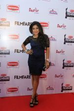 62nd Filmfare south awards (153)_55922cffbaf6c.jpg