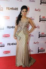 62nd Filmfare south awards (160)_55922d0525ed4.jpg