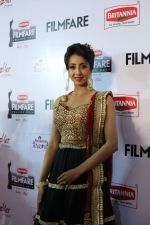 62nd Filmfare south awards (177)_55922d190dc76.jpg