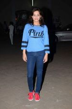 Sneha Ullal snapped at mehboob studios on 28th June 2015 (27)_559230e0647f4.JPG