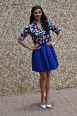 Daisy Shah at Hate Story 3 on location in Mumbai on 6th July 2015 (76)_559b6bc1eba1d.JPG