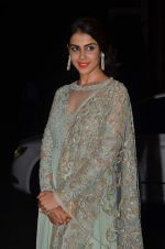 Genelia D Souza at Shahid Kapoor and Mira Rajput_s wedding reception in Mumbai on 12th July 2015 (262)_55a3752c10ed6.JPG