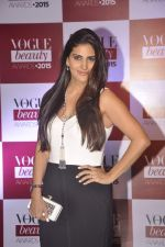 Perizaad Kolah at Vogue beauty awards in Mumbai on 21st July 2015 (84)_55af9e0e02401.JPG