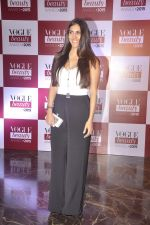 Perizaad Kolah at Vogue beauty awards in Mumbai on 21st July 2015 (88)_55af9e1a13d87.JPG