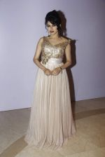 Bhagyashree at Smile Foundations Fashion Show Ramp for Champs, a fashion show for education of underpriveledged children on 2nd Aug 2015 (12)_55bf1cf0cf874.JPG