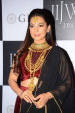 Juhi Chawla on Day 1 at IIJW 2015 on 3rd Aug 2015