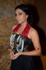 Shweta Salve on day 2 of IIJW 2015 on 4th Aug 2015 (4)_55c1b40530a57.JPG