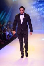 Model walk the ramp for IIJW 2015 Day 3 on 5th Aug 2015 (123)_55c320a049756.JPG