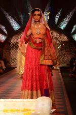 Model walk the ramp for IIJW 2015 Day 3 on 5th Aug 2015 (153)_55c320b58034e.JPG